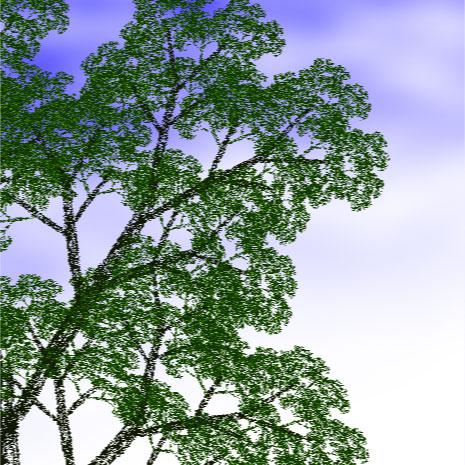 Tree by seyself