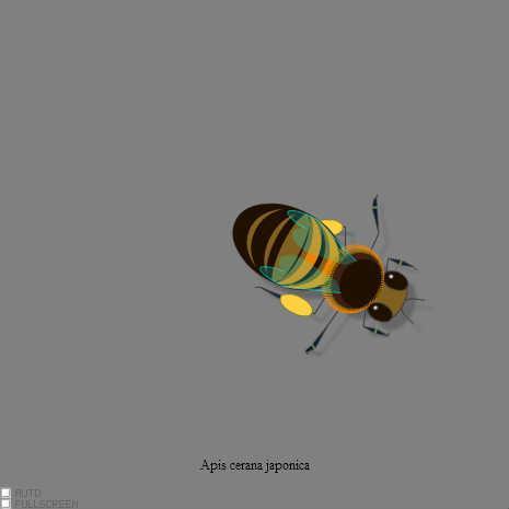 ミツバチを歩かせたくなった by zendenmushi